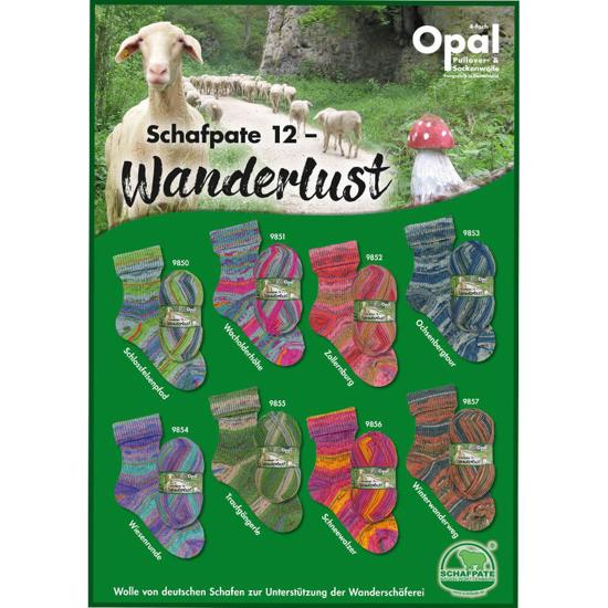 Picture of OPAL Schafpate 12 siūlai kojinėms