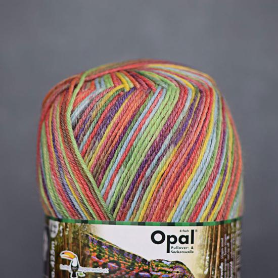 OPAL mezgimo siūlai kojimės